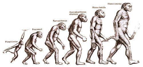 evoluzione.jpg